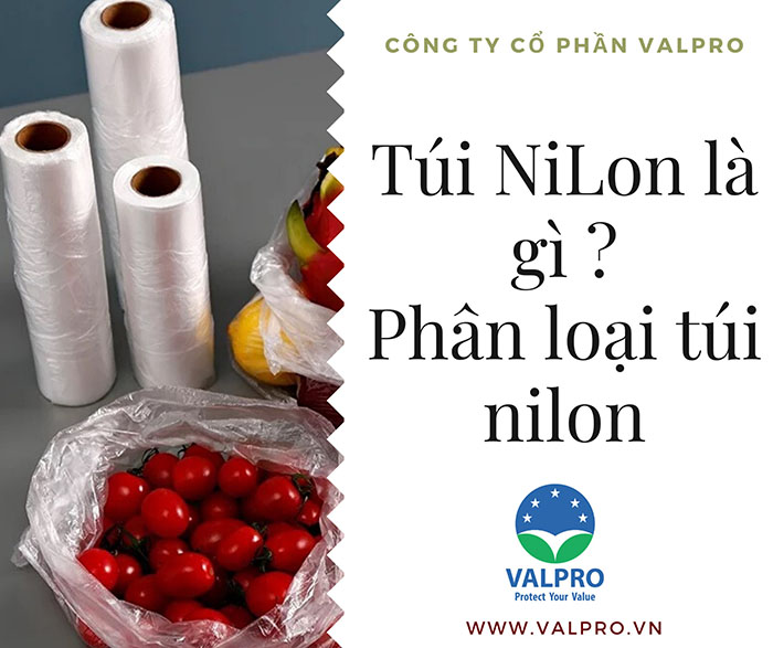 Túi Nilon là gì? Cách nhận biết và phân biệt các loại túi nilon có trên thị trường